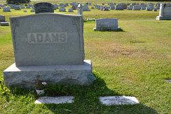 David L Adams
