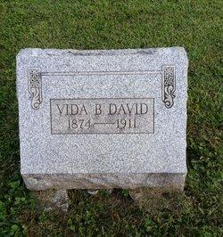 Vida B David