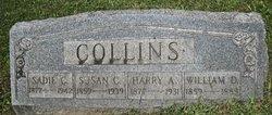 Susan Sue <i>Van Sickel</i> Collins