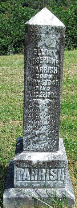 Elvira Josephine <i>Ramsey</i> Parrish