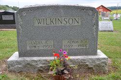 Adam R Wilkinson