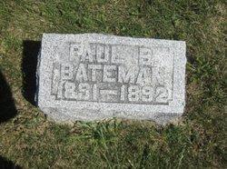 Paul B Bateman