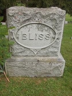 Edna Alcie Bliss