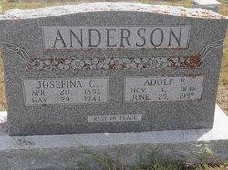 Adolf Frederick Anderson