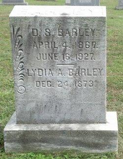 D S Barley