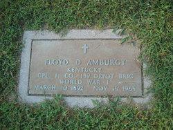 Floyd D Amburgy