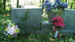 Lettie <i>James</i> Belcher