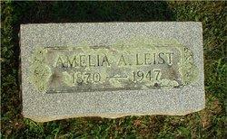 Amelia A Leist