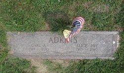 Alice Joy <i>Lutes</i> Adkins