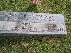 Carl Henderson Williamson