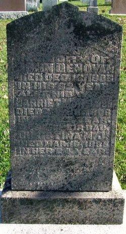Christina M. J. Denovan