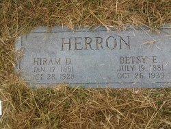 Elizabeth Ann Betsy <i>Smith</i> Herron