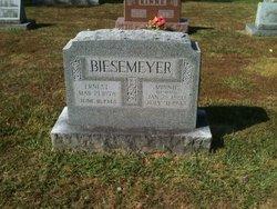 Minnie <i>Kapell</i> Biesemeyer
