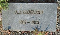 Andrew Jackson Cleveland