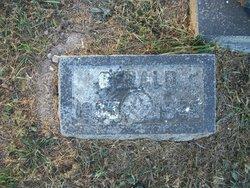 Gerald Rufus Beezley