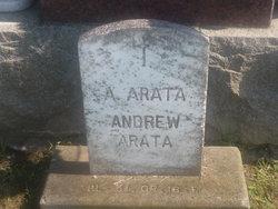 Andrew J Arata