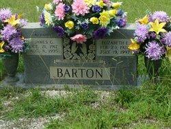 Elizabeth E. Barton