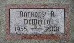 Anthony Ray DeMello