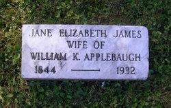 Jane Elizabeth <i>James</i> Applebaugh