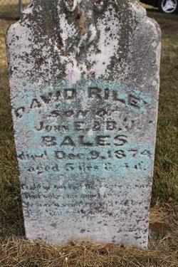 David Riley Bales