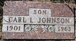 Carl L. Johnson