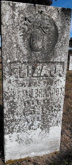 Eliza J Brandon