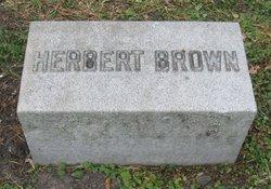Herbert Brown Swift