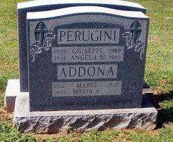 Angela M. Perugini