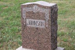 Alvin C Johnson