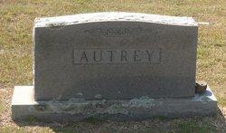 Saphronia Phronie <i>Fowler</i> Autrey