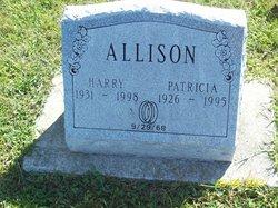 Patricia <i>Hanley</i> Allison