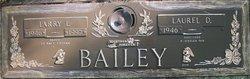 Larry Bailey