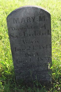 Mary M Liddick
