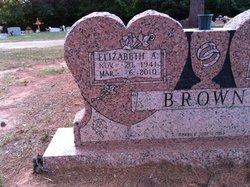 Elizabeth Ann <i>Price</i> Brown