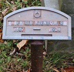 Alcey Rebecca <i>Poor</i> Benzenbower