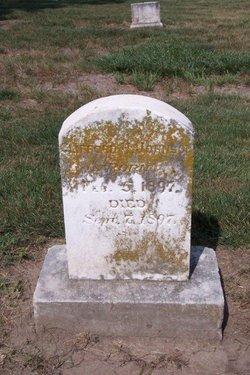 Clifford H Johnson