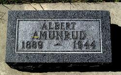 Albert Anderson Amunrud