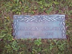 Asbjorn Carlson