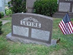 Rose <i>Green</i> Levine