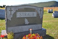 Harry Austin Straub