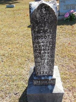 Thomas Brooks Bradberry