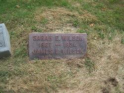 Sarah Ellen Wilson