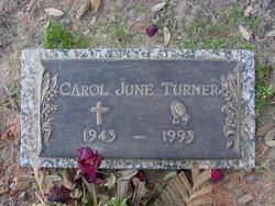 Carol June <i>Hall</i> Turner
