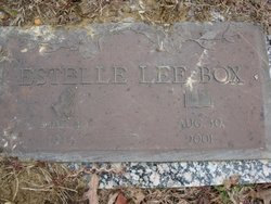 Estelle Lee Holland <i>Brown</i> Box