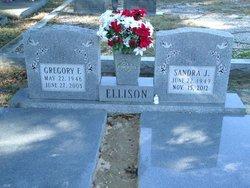 Gregory F. Ellison