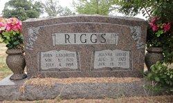 Joan <i>Davis</i> Riggs