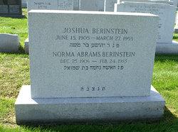Joshua Berinstein