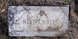 Alice Slinkard