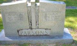 Joseph A Parsons