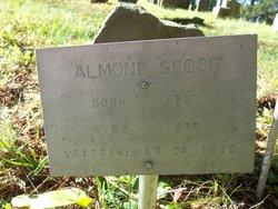 Almond Spoor